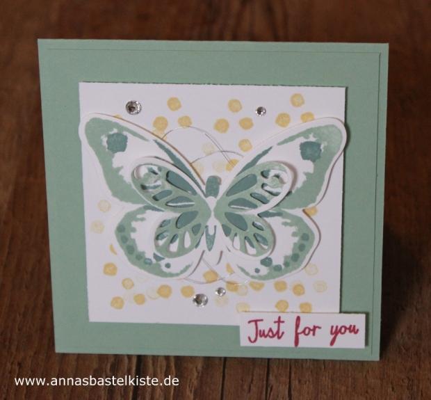 Watercolor Wings Schmetterling Frühjahr Stampin Up